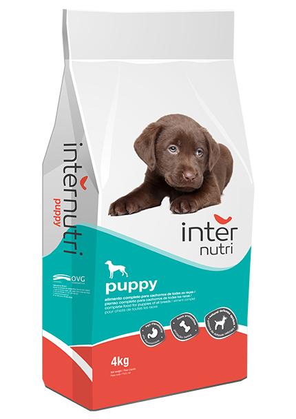 Internutri_Dogs_Puppy_3D
