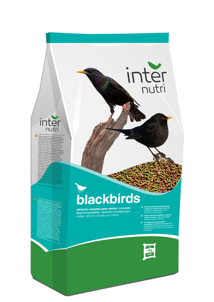 Internutri_Birds_blackbirds_3D