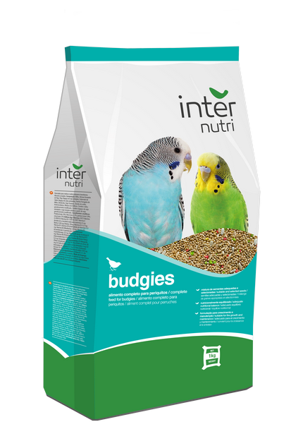 Internutri_Birds_budgies_3D
