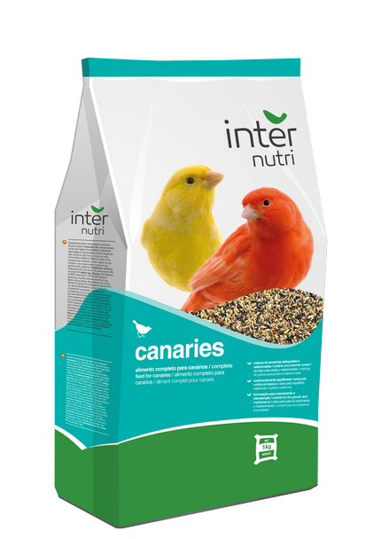 Internutri_Birds_canaries_3D