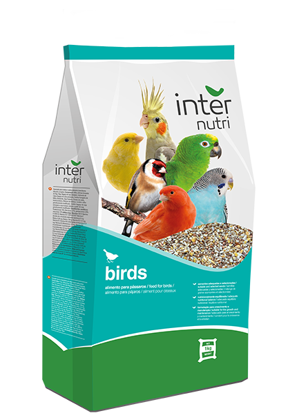 Internutri_Birds_doves_3D