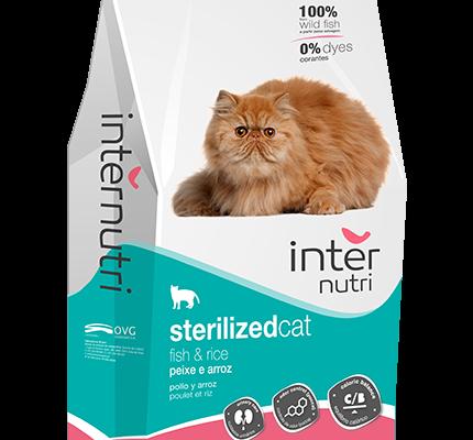 Internutri_SterilizedCat_3D
