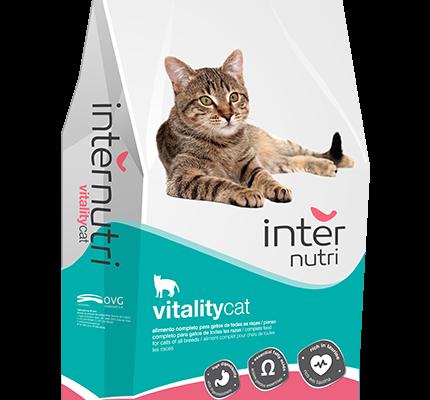 Internutri_VitalityCat_3D