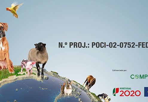 noticias_PT2020_fichaProjeto